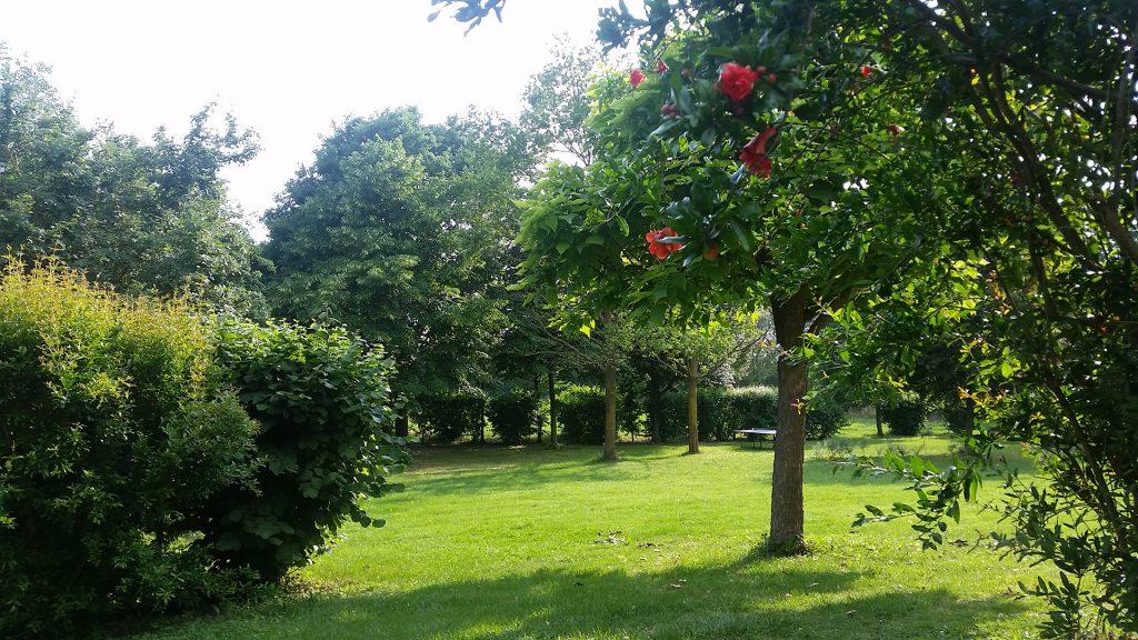 Agriturismo Lemene - Il giardino
