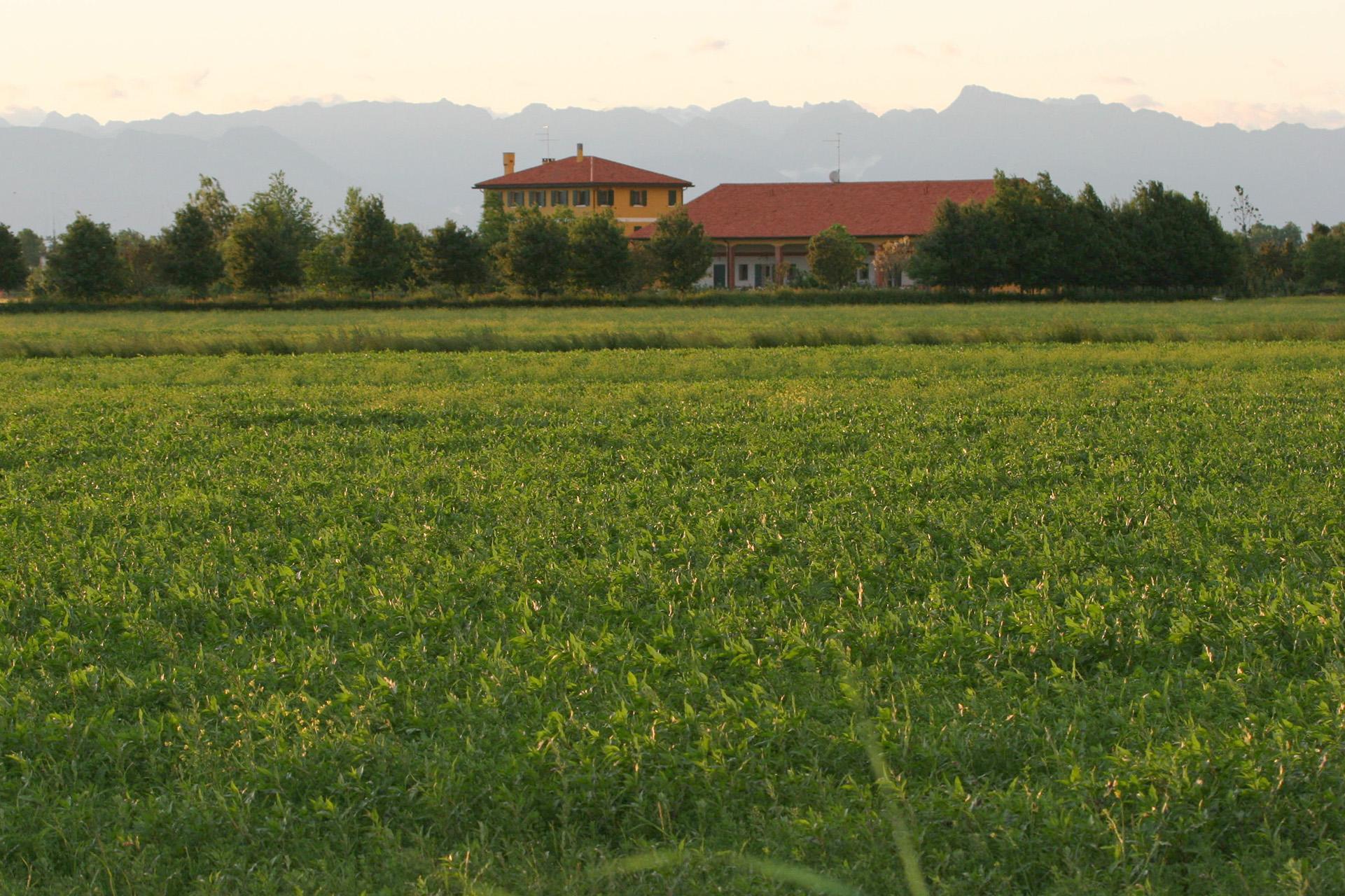 Agriturismo a Caorle - Agriturismo Lemene, Caorle